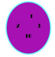 Venn-Euler